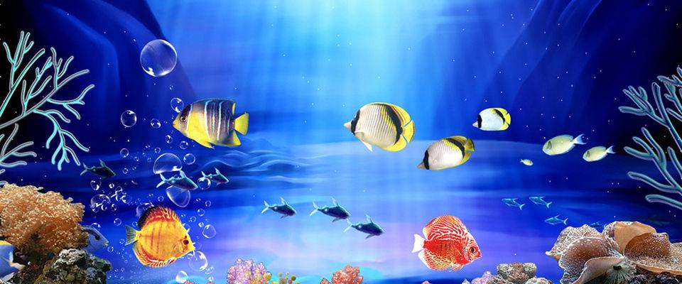 南京海底世界门票